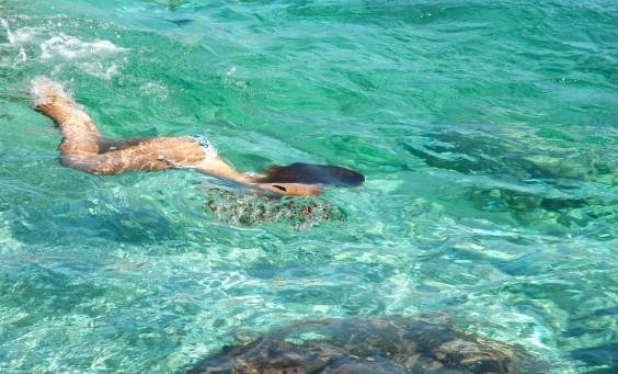 castro marina (13)